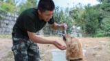 训导员韩孟林喂警犬喝水