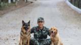 训导员韩孟林与警犬惜别