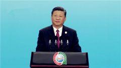 习近平:中国和非洲是好兄弟好伙伴