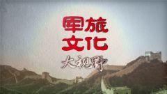 《军旅文化·大视野》20180907强军故事会