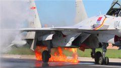 险!险!险!空中撞鸟 飞行员驾战机带火着陆