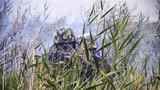 """近日,武警新疆总队机动第六支队以戈壁滩捕歼战斗为背景,组织开展第三季度""""魔鬼周""""极限训练。此次训练的作战地域涉及山地、戈壁、河流、芦苇荡等多种地形,训练全程不设预案、不定脚本,实战对抗、短时记忆、抗压训练和野外生存等20余项科目,徒步行军200公里以上。"""