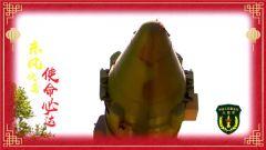 祖国我为您站岗之中国人民解放军火箭军