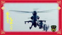 祖国我为您站岗之中国人民解放军陆军