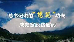 """总书记说的""""绣花""""功夫成羌寨脱贫密码"""