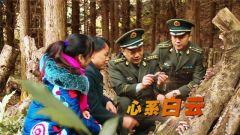 """《中国武警》 20181104 心系""""白云"""""""