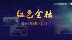 《讲武堂》20181117钱袋子与枪杆子(三)
