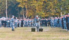 东部战区空军通信某旅首届军事体育运动会速写