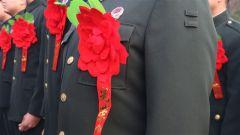 再见军营:火红的军旗下敬最后一个军礼