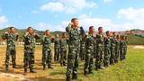 近日,武警云南總隊普洱支隊新訓大隊緊貼實戰要求,精心籌劃,充分準備,嚴密組織開展新兵戰術基礎動作訓練。
