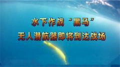 《防务新观察》20181209水下无人潜航器