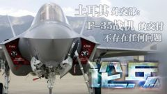 论兵·土高调宣布接收F-35战机 美土关系新变化?