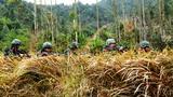 武警桂林支队特战队员密切协同搜索