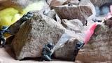 """特战队员在峡谷巨石堆处与""""暴恐分子""""展开激烈交火"""