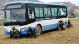 武警特战队员在对公交车进行隐蔽观察