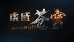 """虎威苍穹!新时代中国空军""""王牌旅长""""郝井文宣传片震撼发布"""