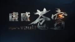 """虎威苍穹!中国空军""""王牌旅长""""郝井文宣传片震撼发布"""