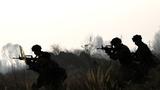 参训官兵进行丛林搜索。