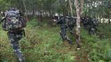"""丛林地带,拉练部队正在追捕""""恐怖分子""""。"""