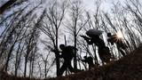 武警山西总队展开丛林追击抓捕训练。