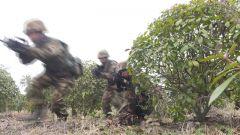 安徽总队:突出实战对抗 锻造反恐利刃