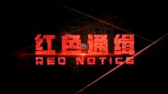 《红色通缉》 第一集 引领
