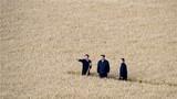 2018年9月25日,中共中央总书记、国家主席、中央军委主席习近平在黑龙江农垦建三江管理局了解粮食生产和收获情况。新华社记者 王晔 摄