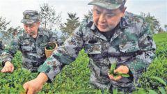 退役军人王明礼开创新模式 带领乡亲们与贫困决战