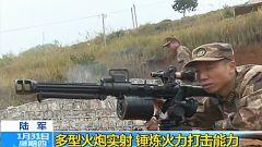 陆军多型火炮实射 锤炼火力打击能力