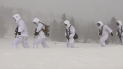 【新春走基层  记者在战位】零下35℃ 巡逻在祖国边境线上