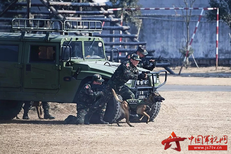 陆军第71集团军霸气班长靳全夺6(0)