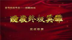 《谁是终极英雄》 20190210 回眸2018 致敬终极英雄(5)