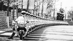 武警北京总队执勤第七支队:铁骑宣示大国威仪