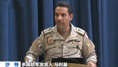 沙特等国否认向基地组织提供武器