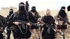 """叙反对派称""""伊斯兰国""""正""""苟延残喘""""覆灭在即"""