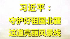 习近平:守护好祖国北疆这道亮丽风景线