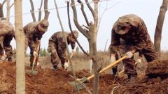 战略支援部队某部开展植树活动