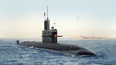 """俄罗斯公布""""北风之神""""核潜艇演习视频"""