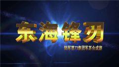 《誰是終極英雄》 20190324 東海鋒刃 陸軍第73集團軍某合成旅