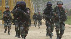 國防部:中柬聯訓互學互鑒共同提高