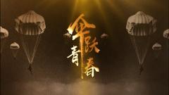 《军事纪实》20190328伞跃青春