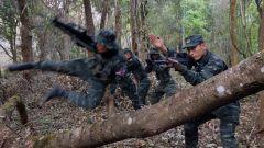 直击演训场丨武警特战队员深入热带丛林开展实战化演练