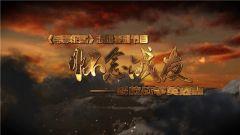 《军事纪实》 20190402 怀念战友——解放战争英烈祭② 耄耋老兵的军礼