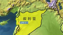 叙称以军空袭哈马省 17名叙军人受伤