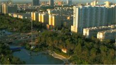 新疆石河子:荒漠戈壁建新城