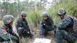 捕歼战斗训练中,特战队员进行战法研究。