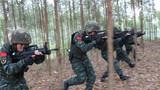 捕歼战斗训练中,特战队员搜索前进。