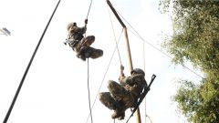 直击演训场 | 锻造必备技能 侦察兵日常都是这么练