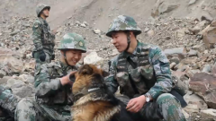 新聞特寫:軍犬拉克的最后一次巡邏