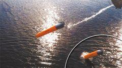 """反鱼雷鱼雷:将导弹防御系统""""挪到""""水下"""